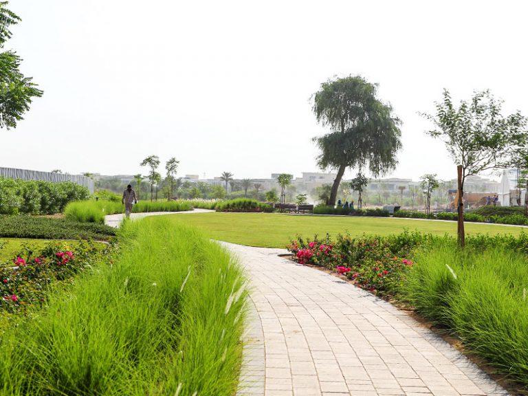 parkway and fairway desert landscape