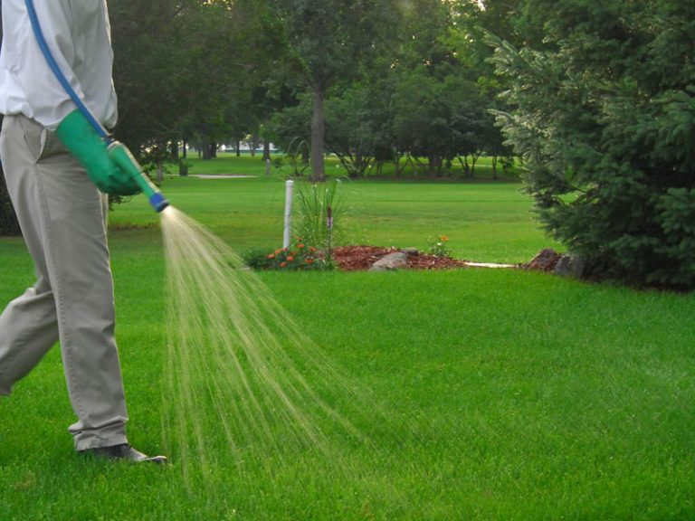 Slow release fertilizer in Desert Energy