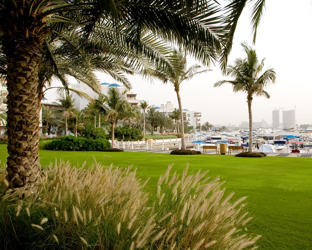 Dubai Creek Landscape constructed by Desert Group