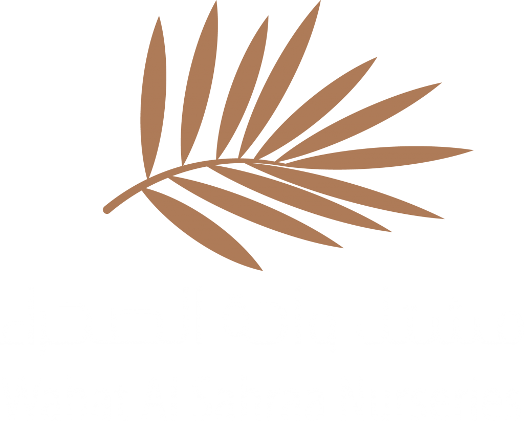 Wahat Al Sahraa Official Logo
