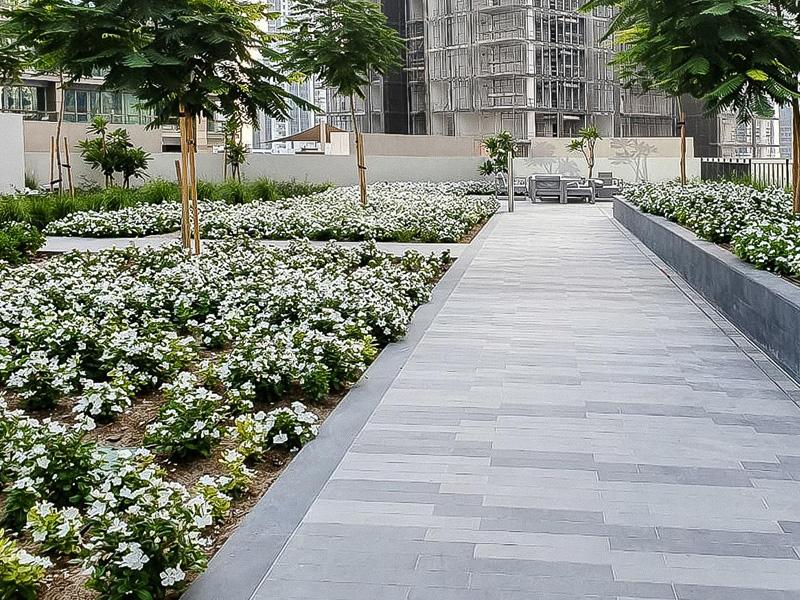 Boulevard crescent landscape constructed by Desert Landscape