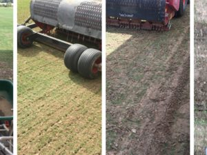 FACTORS THAT INFLUENCE TURF CARE