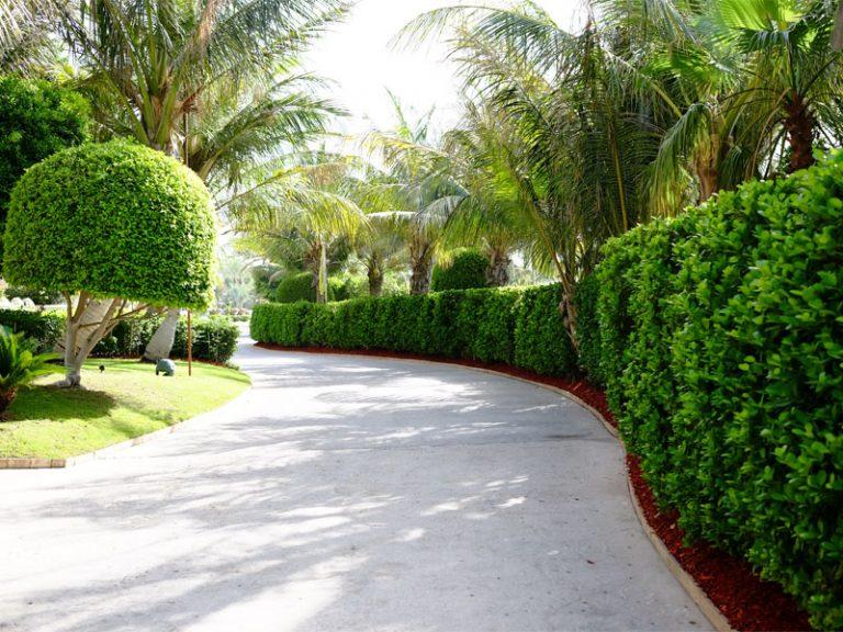 atlantis palm jumeirah 03
