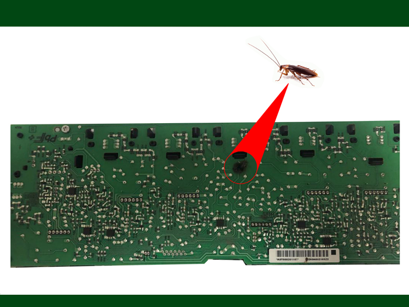 Affected Printer Motherboard by Cockroach in a Corporate Office