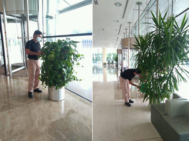 dubai world trade centre ptoject 02